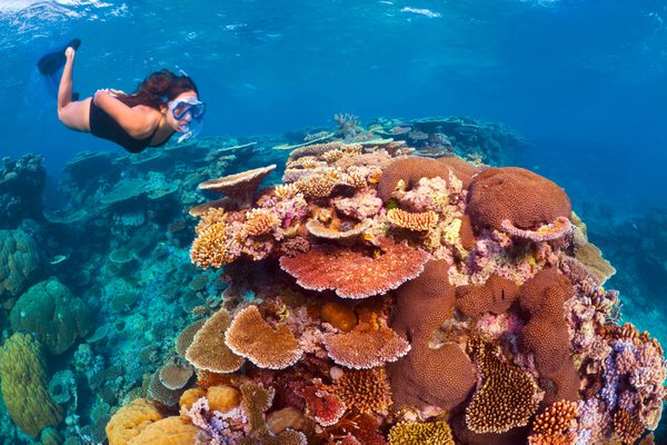 Hotel Queensland - Great Barrier Reef