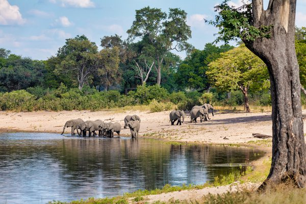 Hotels in Caprivi
