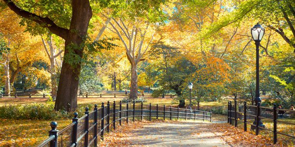 USA New York - Central Park - Herbst